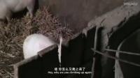 张艺谋-中国留守儿童_标清