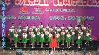 2017郁南县中小学生合唱比赛一等奖:宝珠中心学校《山林小学》