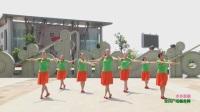 杨丽萍广场舞大全广场舞大全十六步(11)