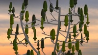 WindTrees by NewWind