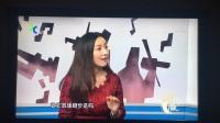 上海纪实频道《赢+》栏目专访吴传平-170624