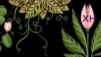 绿色生长鲜花绿叶童话唯美森林植物LED背景视频素材