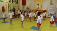 中国截拳道礼仪和宣誓