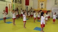 中国截拳道理论(姚谦信6岁领队)