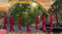 南阳和平广场舞系列--摇一条小船游湖州(红枫团队版)