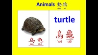 abc英語 動物中英文名稱6 (Learning English and Chinese about animals.)