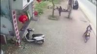 女子骑电动车向树上撞, 有啥事好商量, 干嘛跟树过不去?