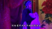 大平调《司马茅告状》 全剧 河南省开州大平调剧团演出_标清