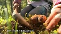 《舌尖上的中国》(第1季)第1集:自然的馈赠