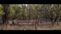 Crystalbrook Lodge - Northern outback Queensland 2