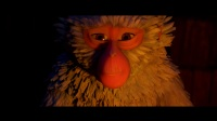 蟲子與猴子的愛情?久保母親将過去的事娓娓道來