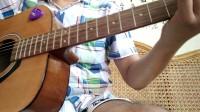 冷血动物 吉他弹唱