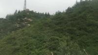 D2 河北白石山旅游随行记录1 雨中进山