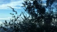 D2 河北白石山旅游随行记录3 下山景色
