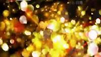 《养生堂》 20120724 理出不生病的奥秘(2)伤寒论 心肾相交黄连阿胶汤 茶饮方莲芯麦冬饮王庆国_标清