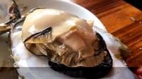 广东桑拿菜原汁原味 手掌大的生蚝和桑拿清远鸡 10_标清