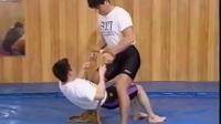 ◆◆♥麻生秀孝-巴西柔术逆関節教学