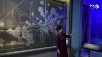 《织金洞博物馆》韩小梅、文平摄制