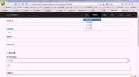Yii语言设置、Model中attributes()方法的使用