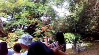 实拍塞班岛一处公园
