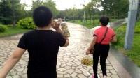 2017年8月18日红莲湖游玩