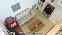 为什么日本人有床不睡,非要睡地上?