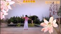 南阳和平广场舞系列--枉凝眉(个人版)