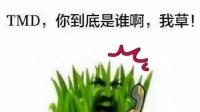 【超哥制作】太阳给草打电话
