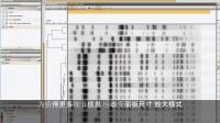在比较窗口中编辑指纹带 [BioNumerics 7] - Subtitles