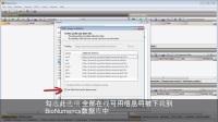 MLST: 安装MLST在线插件 [BioNumerics 7] - Subtitles