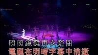 梅艳芳极梦幻2002演唱会