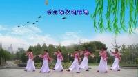 南阳和平广场舞系列--枉凝眉(红枫团队版)