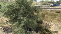 老戴&紫雨《GTA5 欢乐差事》03 直升机