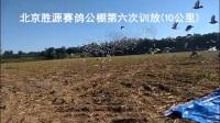 北京胜源赛鸽公棚第六次训放(10公里)