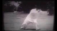 传统杨氏太极拳片段1  董虎岭珍贵资料 1960年
