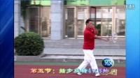 2003.《难忘今宵》柔力球第三套【背面】字幕版张金树