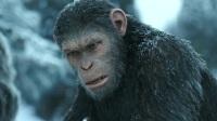 猩起3—其他—视频高清在线观看-优酷