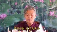 菡萏花开04(网络学佛答疑 上集)