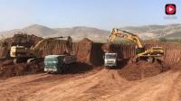 工地实拍, 四台卡特挖掘机同时作业, 挖土装车过程