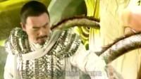 龙真实存在的证据:2007年江苏高邮龙吸水事件拍到的真龙