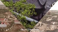 郑州园博会主题曲:绿色的梦CF