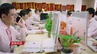 2017年乐有家控股集团有限公司宣传片