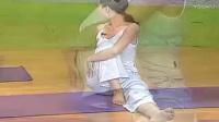 瑜伽入门基础 瑜伽初级教程在家练全套