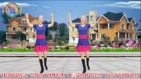 2017最新蓝天云广场舞 健身舞《DJ学不会》附口令教学