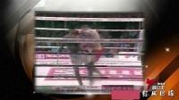 第八集:再叙辉煌(二)宝力高细说KO泰国拳王