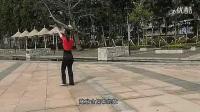 动动广场舞山里红分解教程及背面演示_1_标清