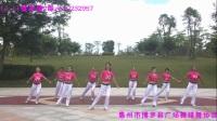 Li.Li 健身操 排舞-1《功夫熊猫》附背面演示