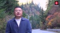 达古冰山风景区管理局文局长解说红叶季