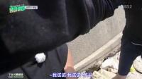 [TSKS]龙属相俱乐部.E03.171024.中字