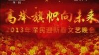 2013.2.5 cctv1 广告